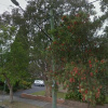 Outdoor lot parking on Rosalind Street in Cammeray NSW 2062