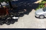 parking on President Avenue in Kogarah
