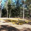 Cedar Vale - 9m x 4m Space for Parking/Storage #1.jpg