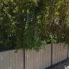Moorooka - Safe Open Parking near Woolworths #2.jpg