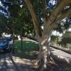 Indoor lot parking on Bellevue Park Road in Bellevue Hill NSW