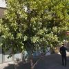 Undercover parking on Docklands Dr in Docklands VIC 3008