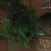 Strathfield - Uncovered Parking near Station.jpg