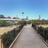 Woolloomooloo - Safe Parking near Succulent Garden.jpg
