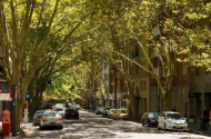 parking on Macleay Street in Potts Point