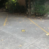 Outdoor lot parking on Riley street in North Sydney