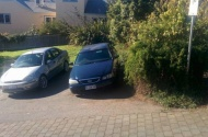 Parking Photo: Sheppy St  Launceston TAS 7250  Australia, 34160, 146793