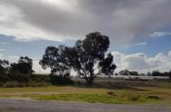 Parking Photo: Sydney Rd  Gnangara WA 6077  Australia, 35296, 166477