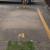 Mascot - Driveway Parking close to the Airport.jpg