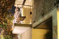 Parking Photo: Lorne Avenue  Kensington NSW  Australia, 34573, 118428