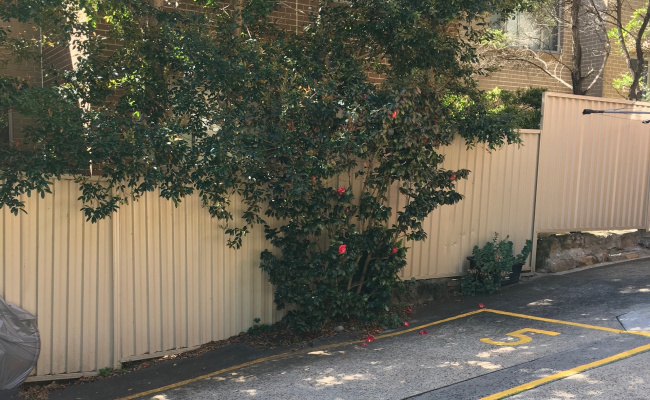 parking on Arden St in Coogee NSW