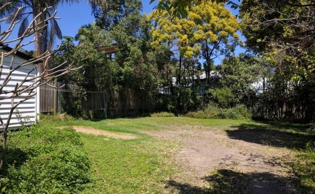 Spring Hill Back Yard