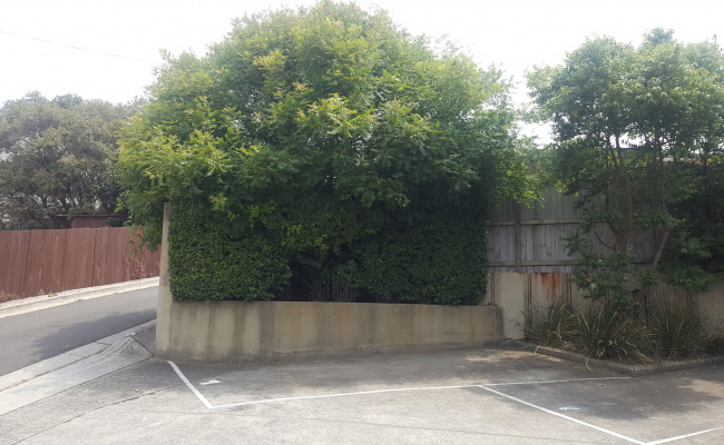 Outdoor lot parking on Kennedy Lane in Kingsford New South Wales