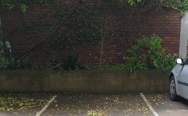 Outside parking on Phillip Street in Waterloo New South Wales 2017